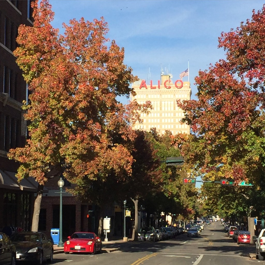 More to love in Waco