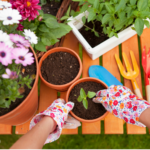 Gardening Tips and Money-Savers {for Beginners}