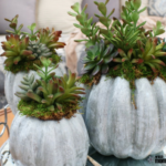 Easy and Inexpensive Fall Decor