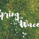 A Complete Guide to Spring in Waco