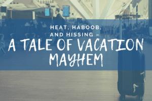 WACO-Heat, Haboob, and Hissing – a Tale of Vacation Mayhem